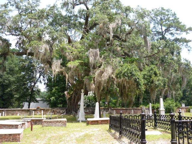 Savannah Graveyard